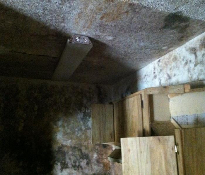 Mold Damaged Vacant Home in Phoenix Before