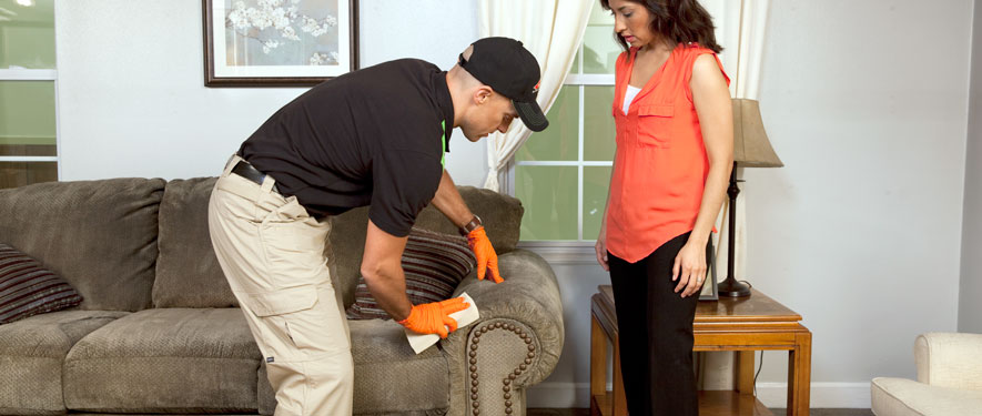 Phoenix, AZ carpet upholstery cleaning